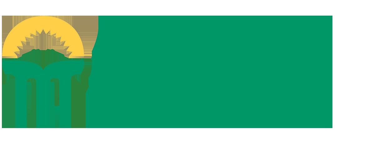 Helsingin Kesäyliopisto_logo (002)