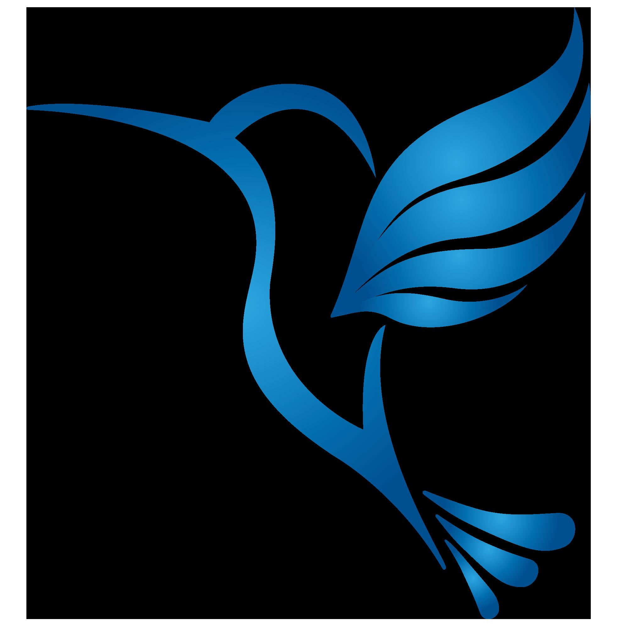 VMIT_sininen kolibri