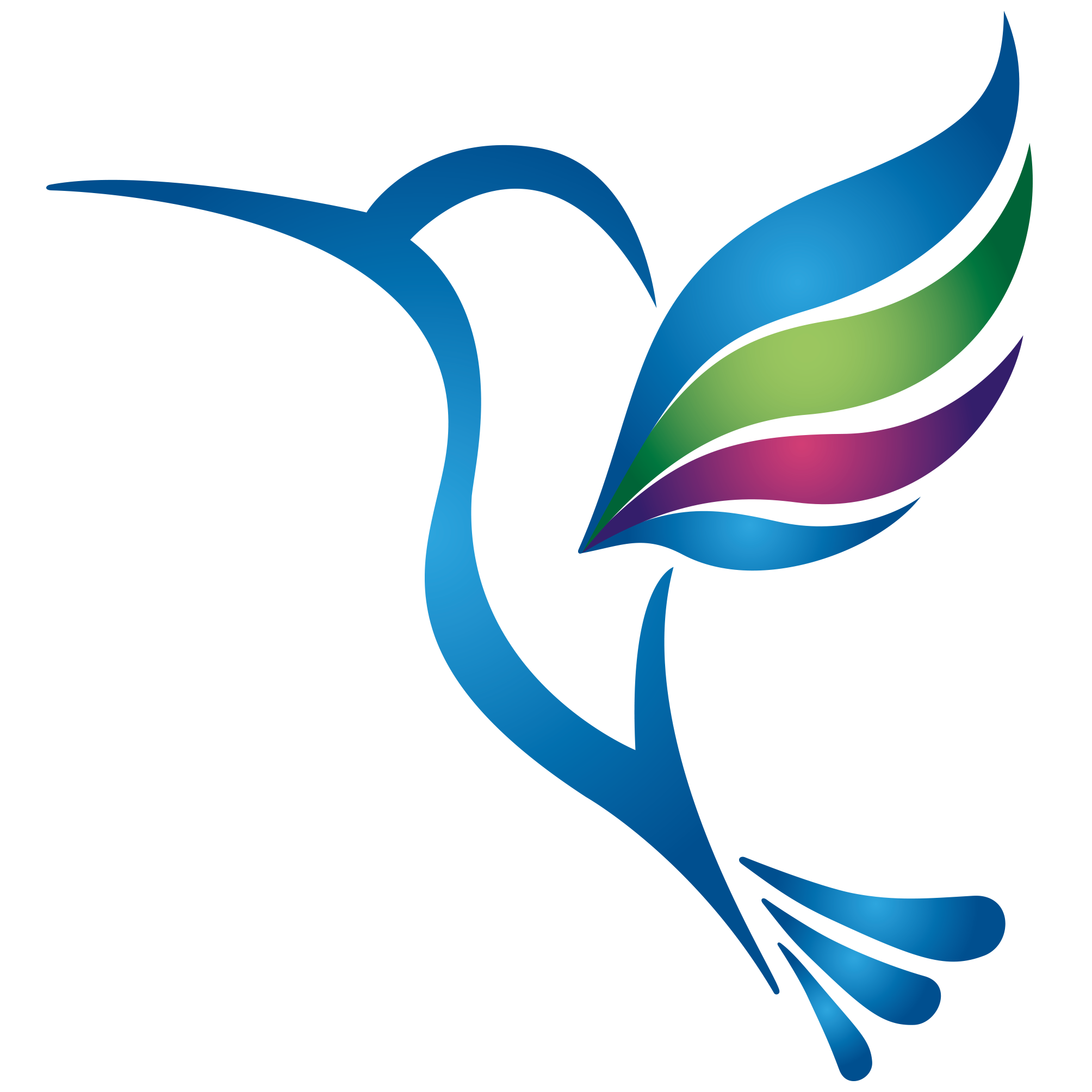 VMIT_lila kolibri